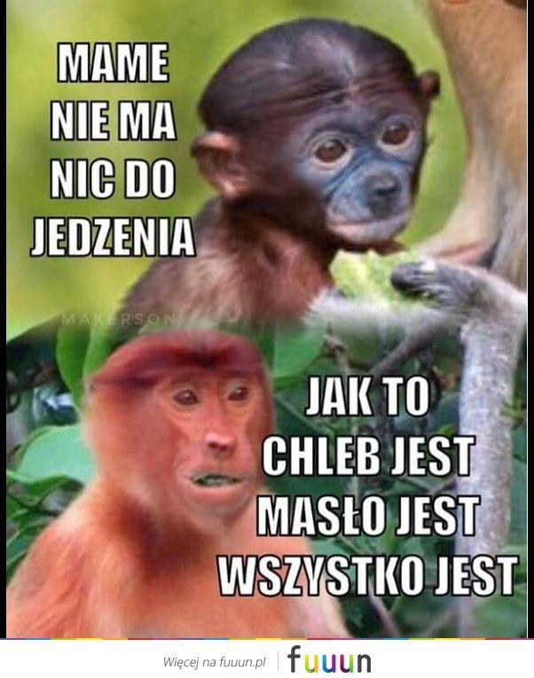 Ja Jebie #3048