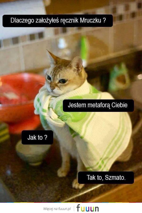 Koteł Bożenki